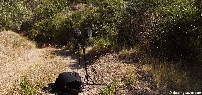 Recording Crickets and Cicadas in Greece