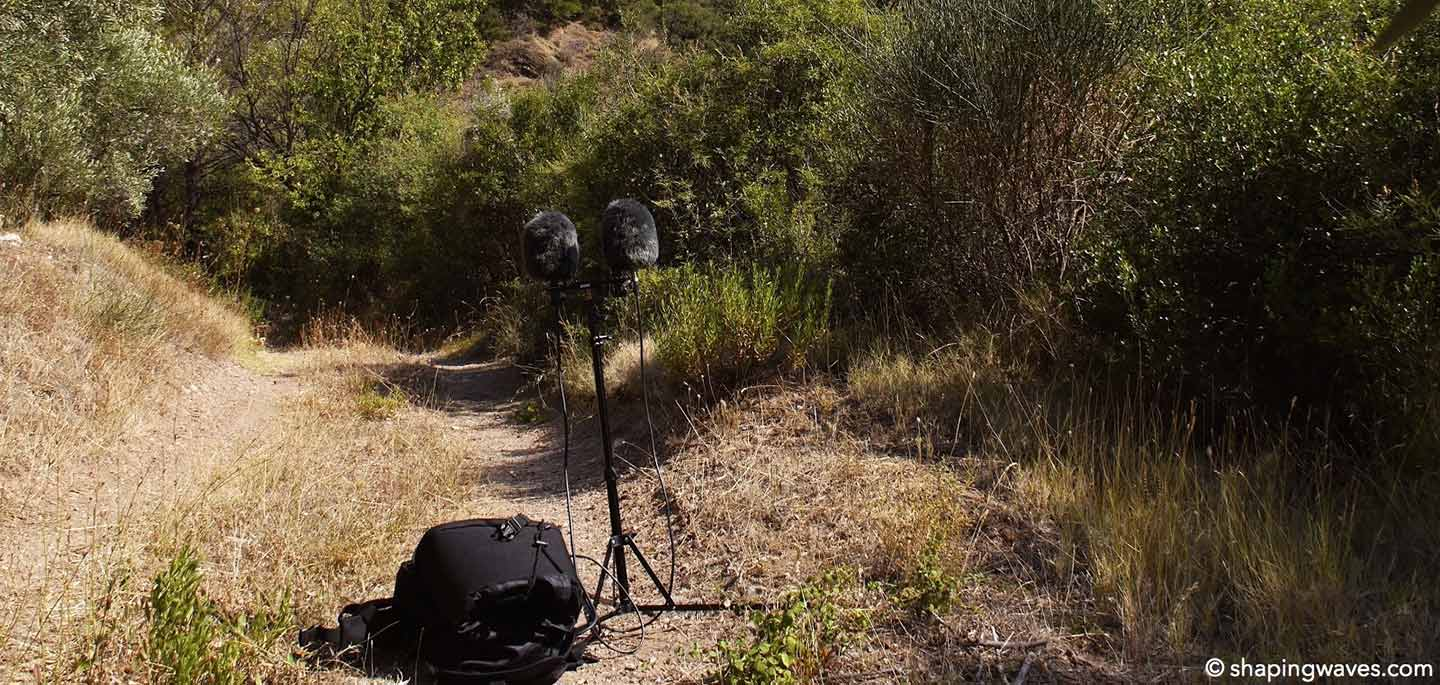Recording Crickets and Cicadas in Greece